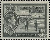 Stamp Turks & Caicos Islands Catalog number: 118