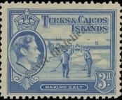 Stamp Turks & Caicos Islands Catalog number: 124