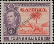 Stamp Gambia Catalog number: 136